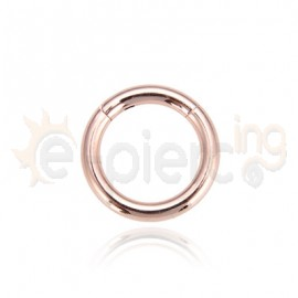 Segment Ring Piercing Clicker - 1.0x8mm 31018